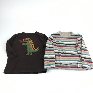Long-Sleeved Top Pair Size 2T