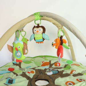 Skip Hop Activity Mat
