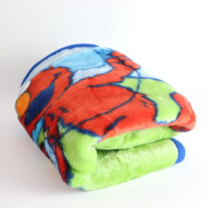 Sesame Street Plush Throw