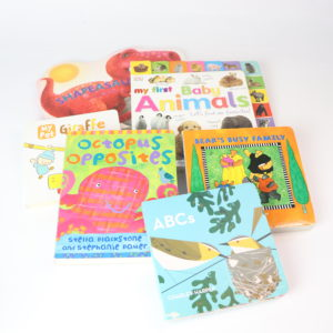 Busy Baby Board Book Set