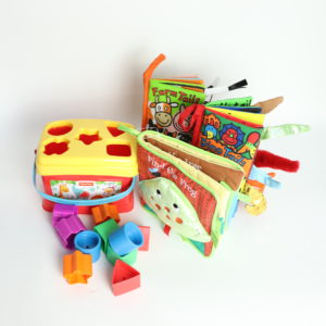 Shape Sorter and Book Set