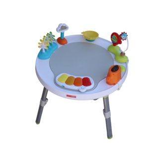 Skip Hop Explore & More Activity Table